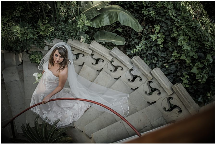 Ryan & Megan's picnic wedding at Shepstone Gardens