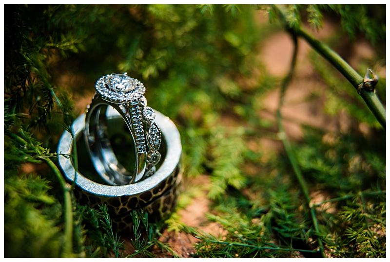 Best wedding photographer - AlexanderSmith_3729.jpg