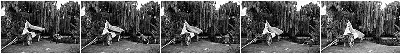 Best wedding photographer - AlexanderSmith_5014.jpg